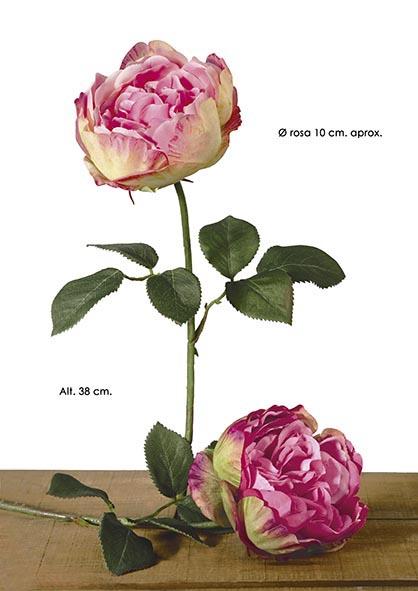 SINGLE ENGLISH ROSE. 38 CM. CEREZA