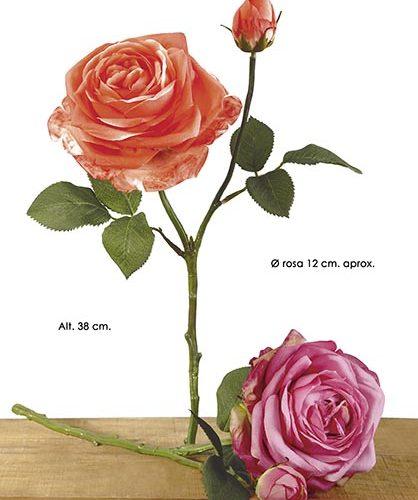 HOLLAND ROSE X 2. 38 CM. CEREZA.