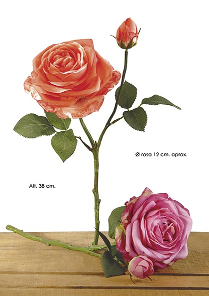 HOLLAND ROSE X 2. 38 CM. CEREZA.