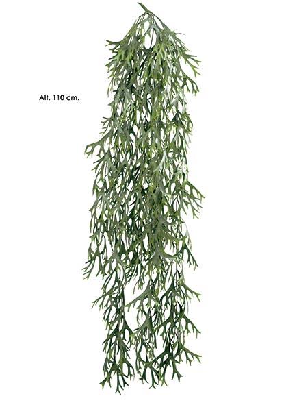 COLGANTE PLATYCERIUM. 110 CM. NATURAL