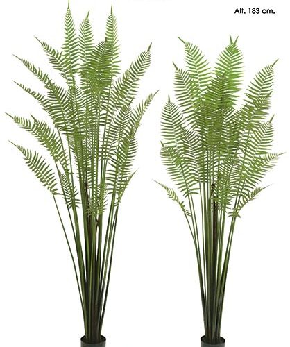 MACETA GOLDEN FERN X 31. 213 CM.