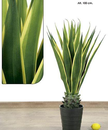 MACETA AGAVE PLANT. 100 CM. VARIEGATA.