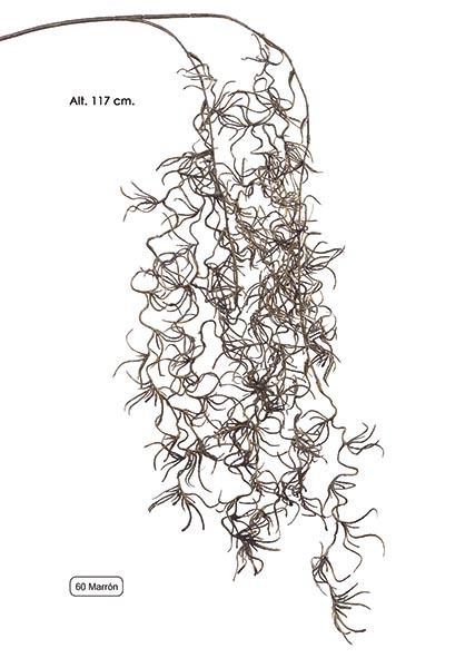 RAMA TILLANDSIA X 2. 117 CM. MARRîN.