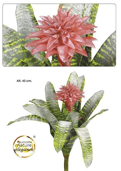 PLANTA BROMELIA. 45 CM. NATURAL
